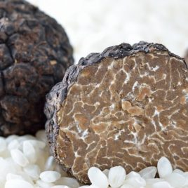 Fresh Truffle Gift Box – Black Autumn Truffle (Tuber Uncinatum)