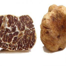Fresh White Spring Truffles (Tuber Albidum/Borchii), 20-40g